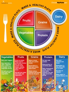 colorful My Plate food icon with fake next to food groups