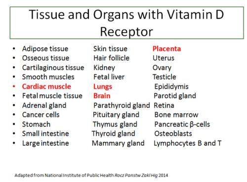 vitaminDreceptor