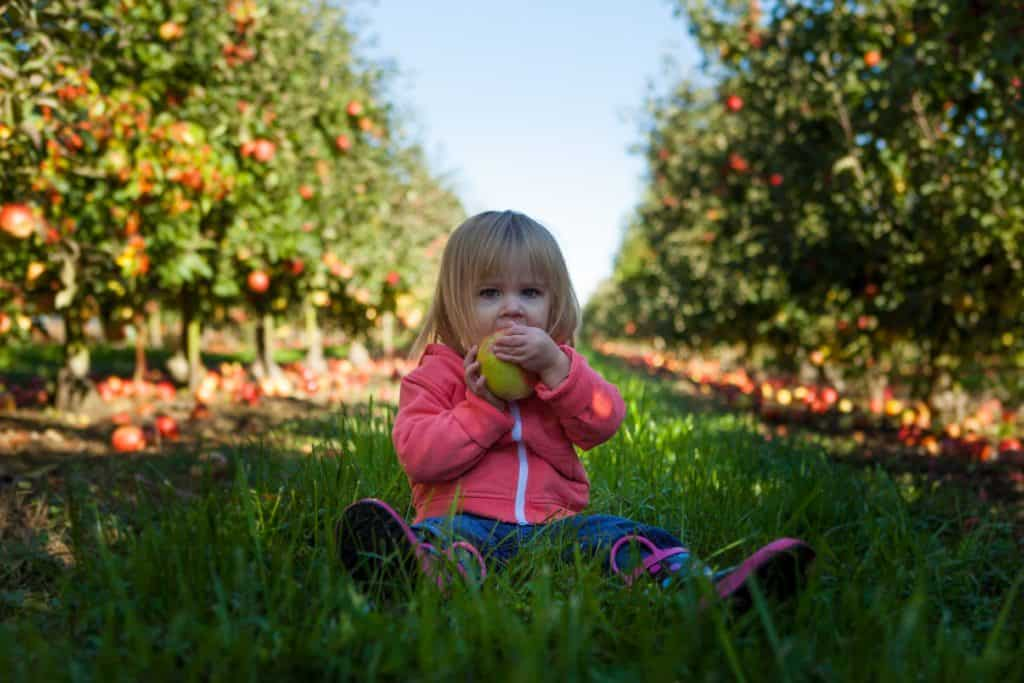 young girl with eating green apple on grass