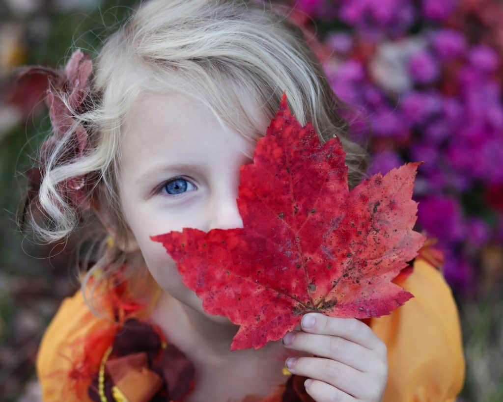 young girl holding a red leaf up to her face during the fall