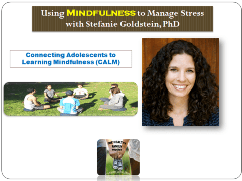 The Mindful Family. Using Mindfulness to Manage Stress with Stefanie Goldstein [Podcast]